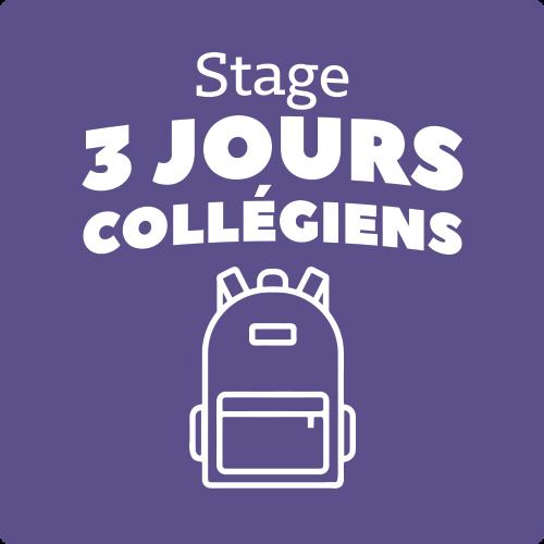 Image de STAGE 3J collégiens- Du lundi 20 au mercredi 22 Avril de 10h à 18h00